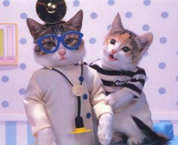 Кот по кличке Пятачок - профессиональный терапевт