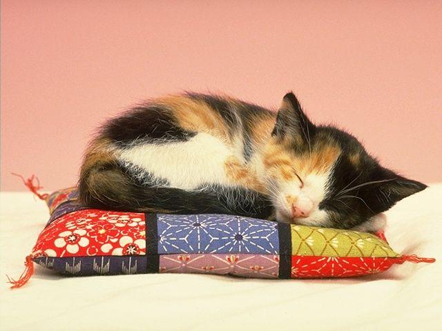 Удобная подушка